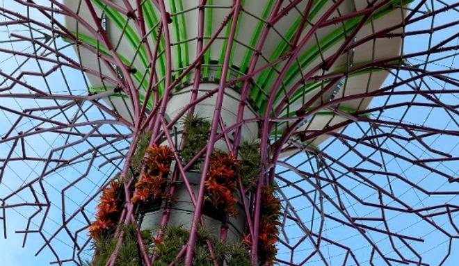 Bosques con enormes árboles artificiales en Singapur