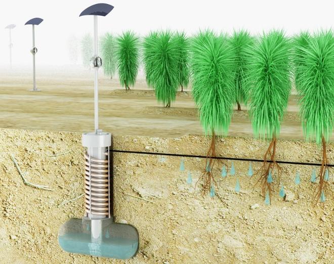 Sistema de riego por condensaci n gana el premio james for Sistema de riego