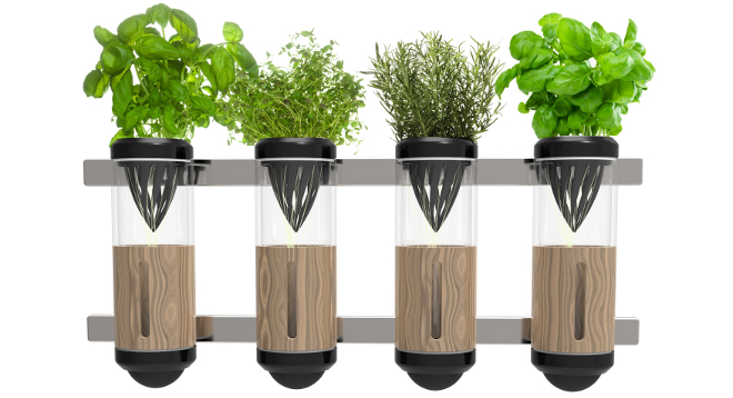 Cultivar verduras con facilidad en un espacio urbano m nimo Cultivar vegetales en casa