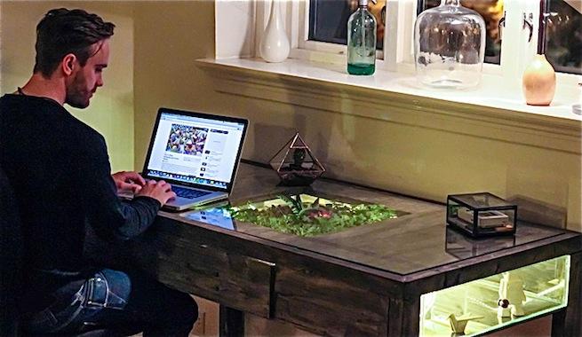 Escritorio con un terrario en el caj n - Como hacer una mesa de escritorio ...