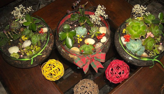 Mini jard n de mesa for Decoracion para terrarios