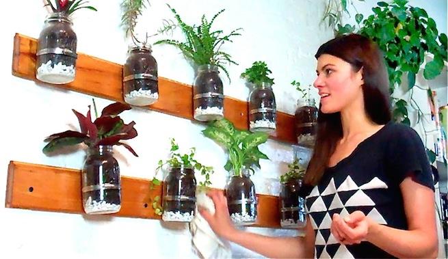 Mini jard n interior de hierbas arom ticas para cocinar for Jardin vertical cocina