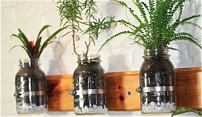 Mini jard n interior de hierbas arom ticas para cocinar for Jardin vertical para cocina