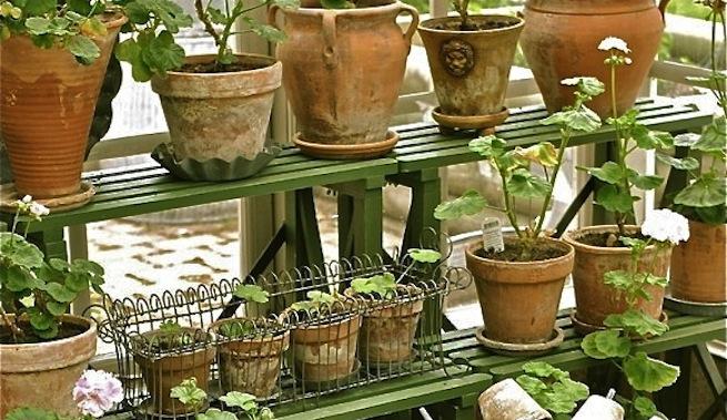 Jard n vertical colocando macetas en estantes for Jardines en macetas
