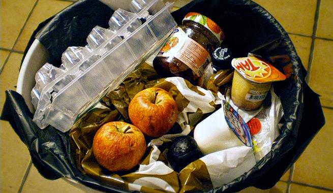 Resultado de imagen de comida en la basura
