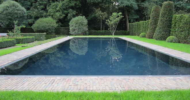 Tratamiento ecol gico del agua de la piscina for Piscina de agua