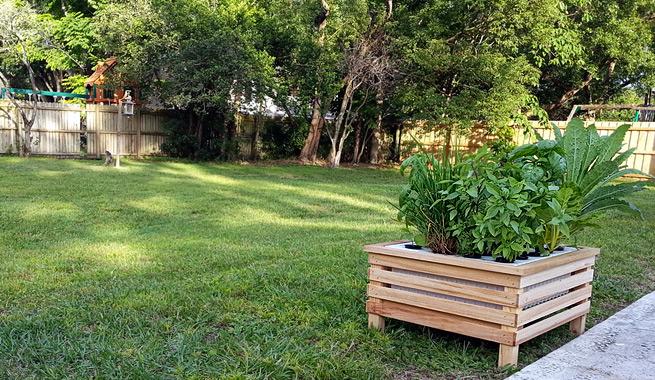 Peque o huerto hidrop nico para el hogar for Antorchas para jardin caseras