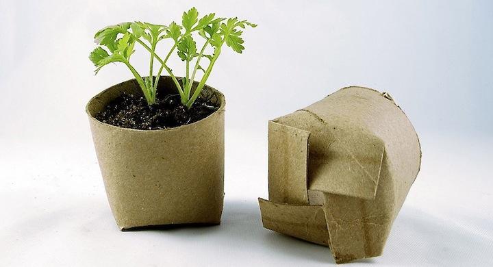Ideas para reciclar rollos de papel higienico