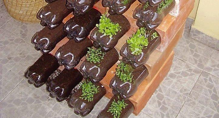 Ideas para reutilizar las botellas de pl stico en jardiner a for Macetas originales para el jardin