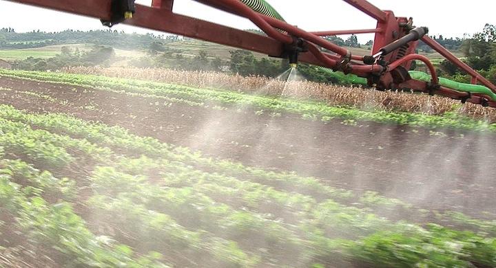 El peligro de usar herbicidas