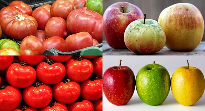 Frutas y verduras que no saben a nada 2