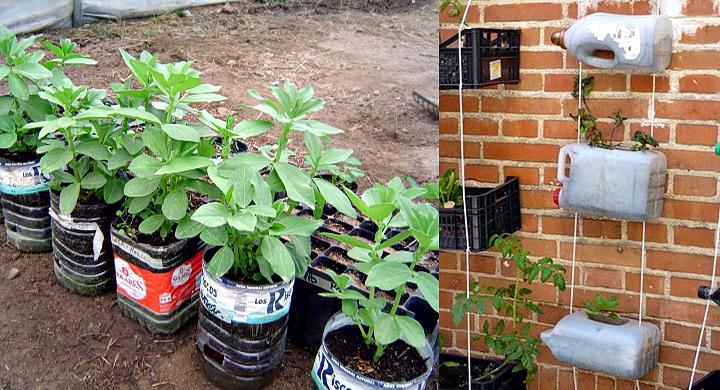 Ideas para reciclar las garrafas de agua for Objetos de jardineria