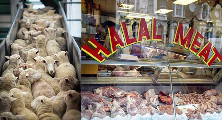 Mataderos halal