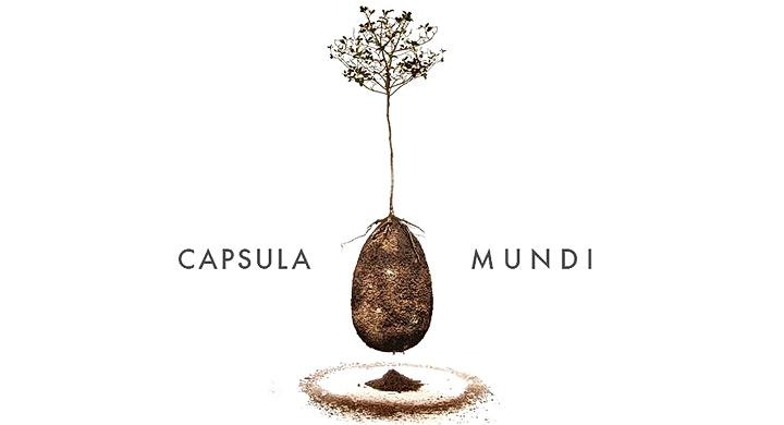 Capsula-Mundi 3