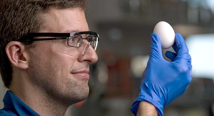 Investigacion bioplasticos