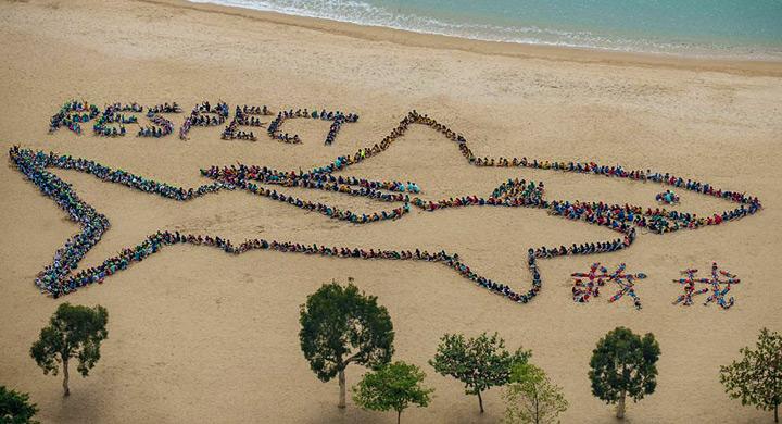 Defiende los oceanos