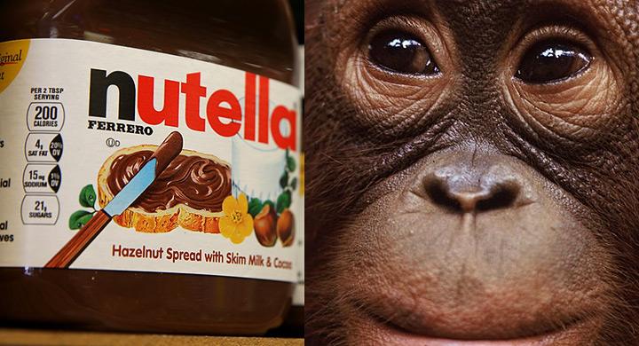 Nutella deforestacion