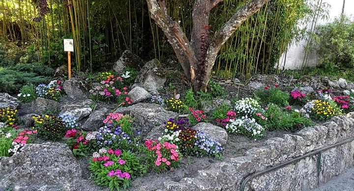 Biodiversidad jardin