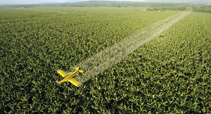 Pesticidas 2