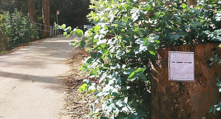 Nota pesticidas parque