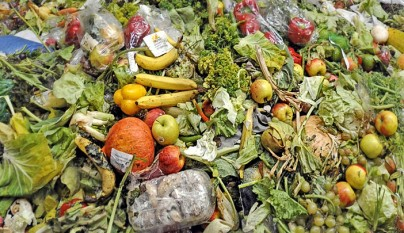 Desechos alimentos