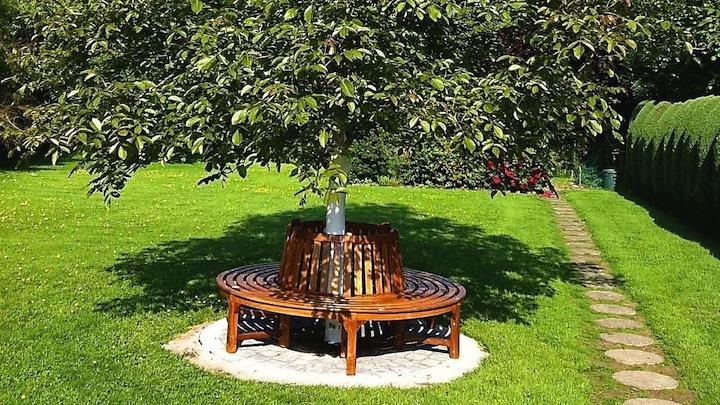 Arbol jardin