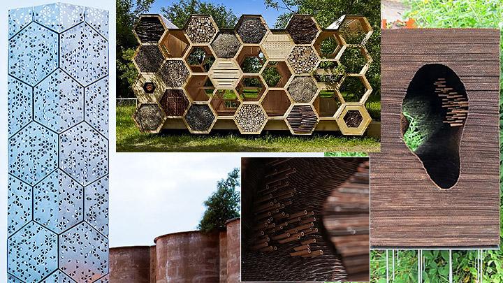 panales-para-abejas