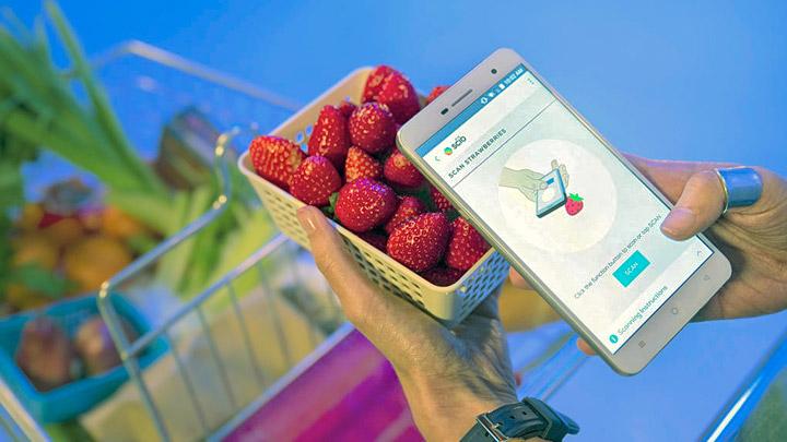 Sensor-molecular-en-el-smartphone