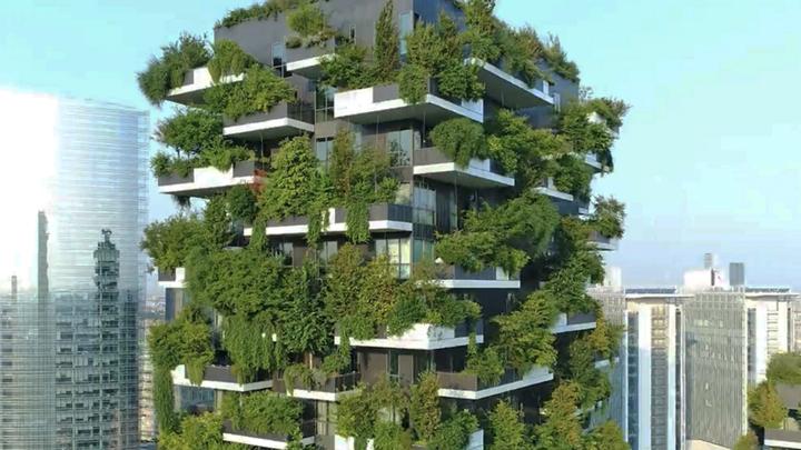 casas-bosque