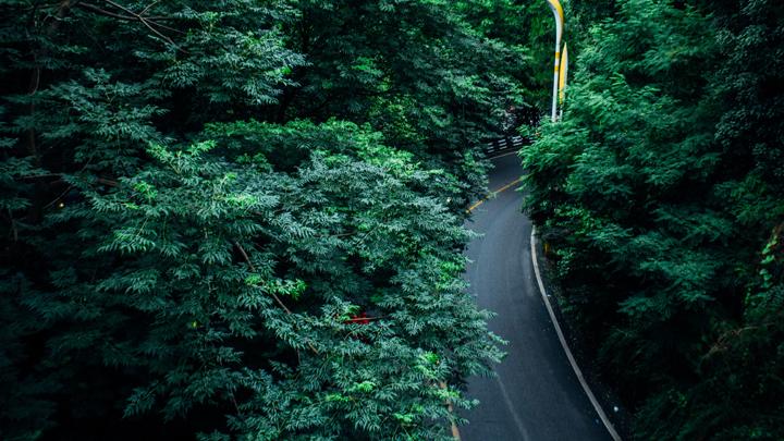 asfalto-ecologico