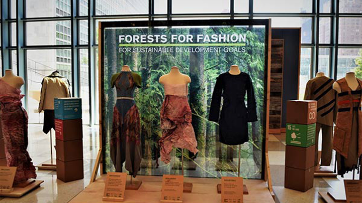 forest-fashion