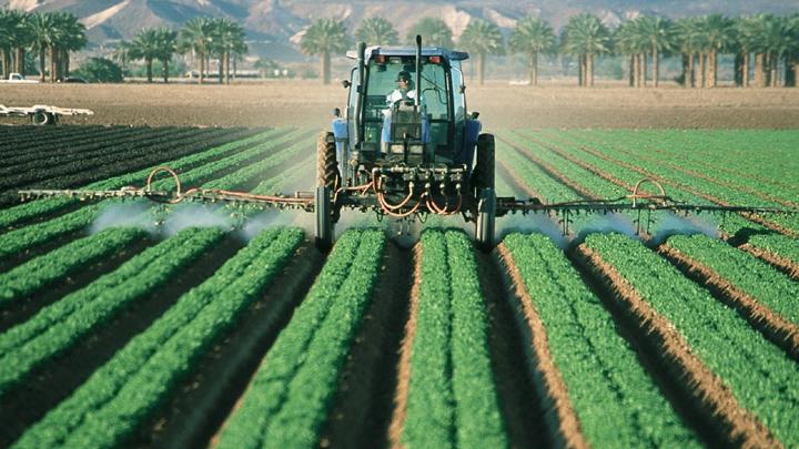 cultivos-plaguicidas