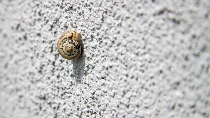 cemento-sostenible