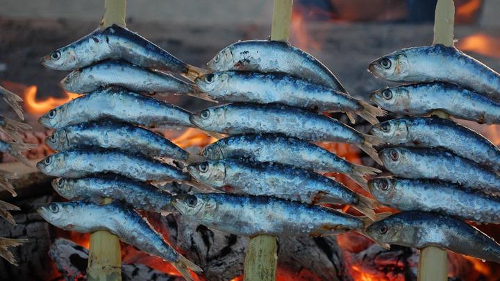 grasa-pescado-azul