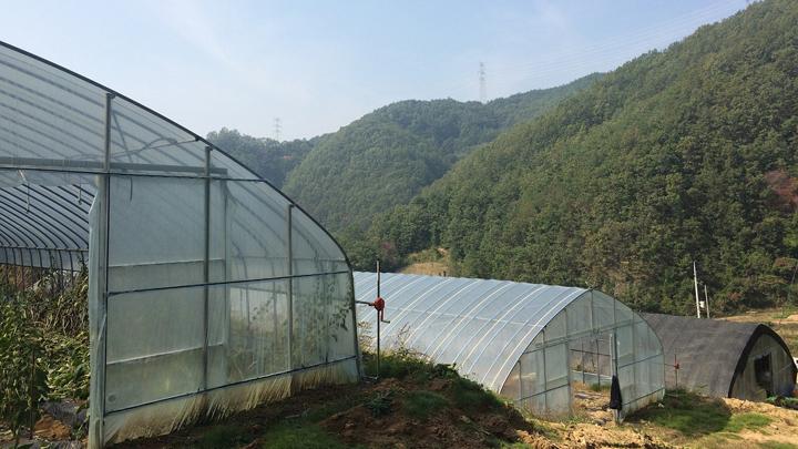 plasticos-agricultura