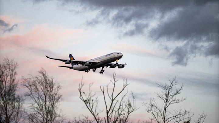 avion