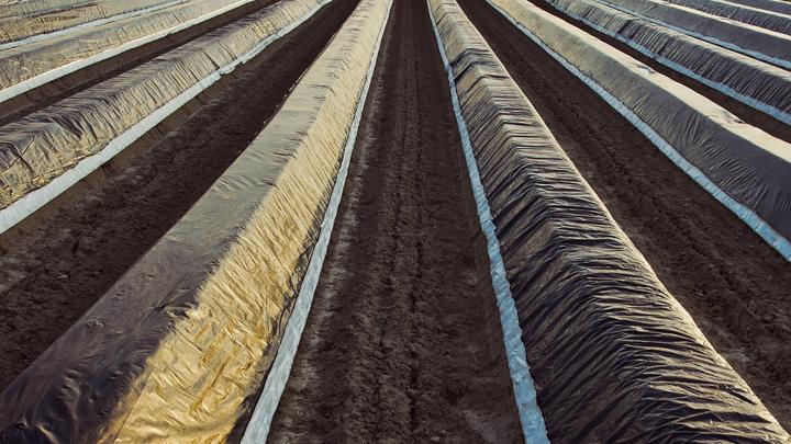 plastico-agrario